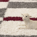 Shaggy pile living room Shaggy carpet pile height 3cm-grey-White-Red