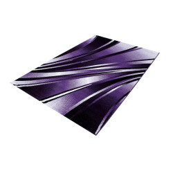 Modern Designer Living Room Carpet, Parma 9210 Purple