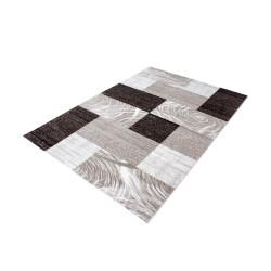 Modern Designer Living Room Carpet, Parma 9220-Brown