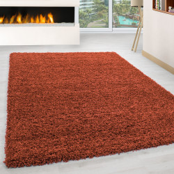 Structure à fibres longues Salon Shaggy Tapis de Parement 3cm unifarbe Terra