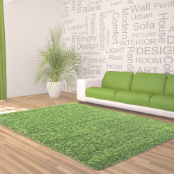 Shaggy pile living room DREAM Shaggy carpet, solid color pile height 5cm Green