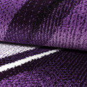 Modern Designer Living Room Carpet, Parma 9210 Purple