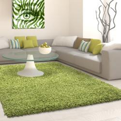 Structure à fibres longues Salon Tapis Shaggy 3cm hauteur de la pile unifarbe Vert
