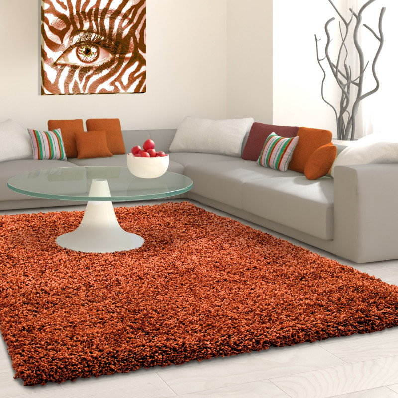 Shaggy pile living room Shaggy carpet pile height 3cm slim fit Terra